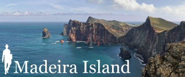Madeira Island by The Perfect Tourist