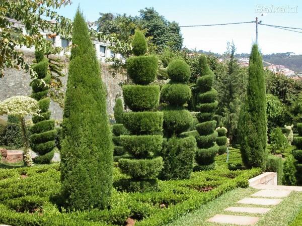 Jardim-Botanico-Ajuda_2