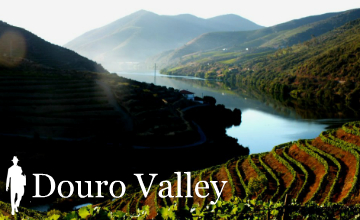 Douro Valley Travel Guide