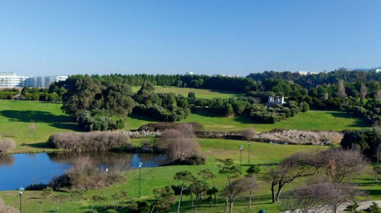 Oporto City Park