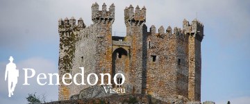 Viseu Travel Guide