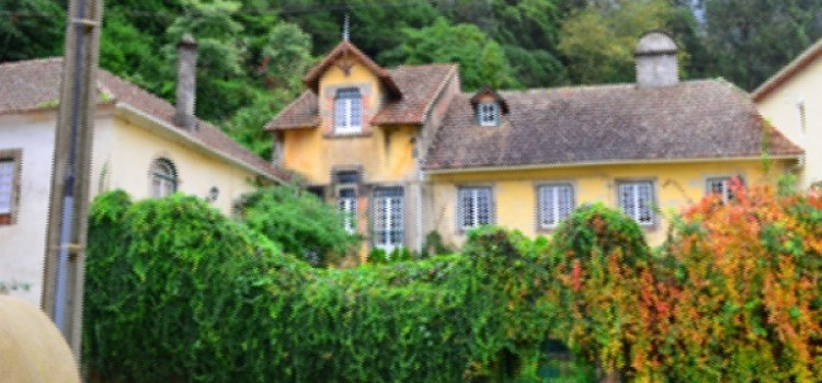 Guest Houses, Chalets or Manor Houses